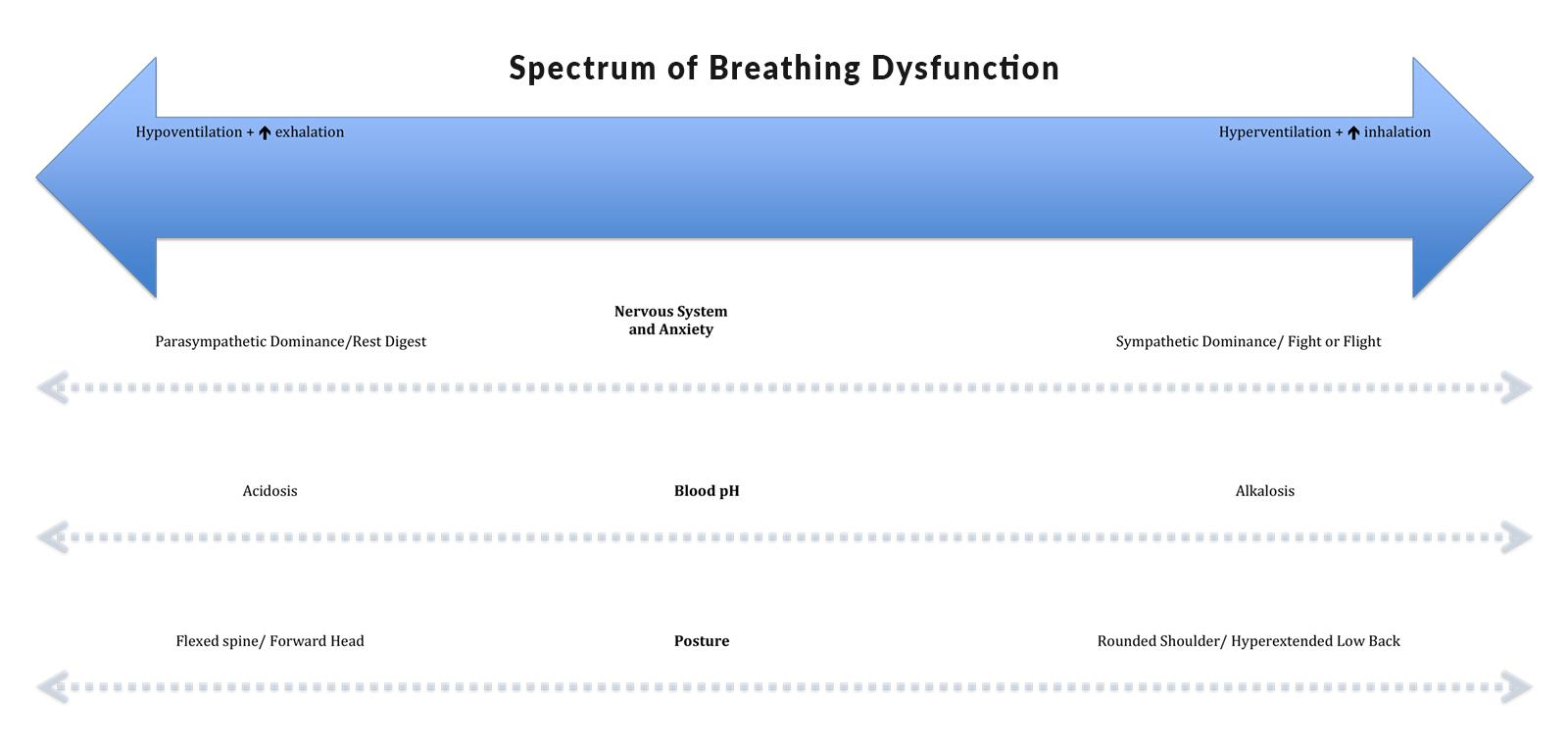SpectrumBreathingDysfunction_Diagram